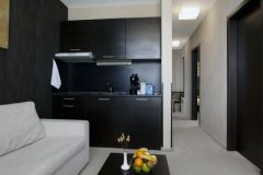 Aparthotel Lucky Bansko SPA & Relax Διαμέρισμα Πολυτελές σαλόνι και κουζίνα