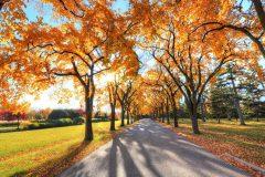 Φθινόπωρο στο Μπάνσκο