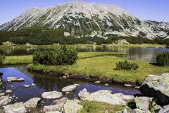 Κορυφή Todorka